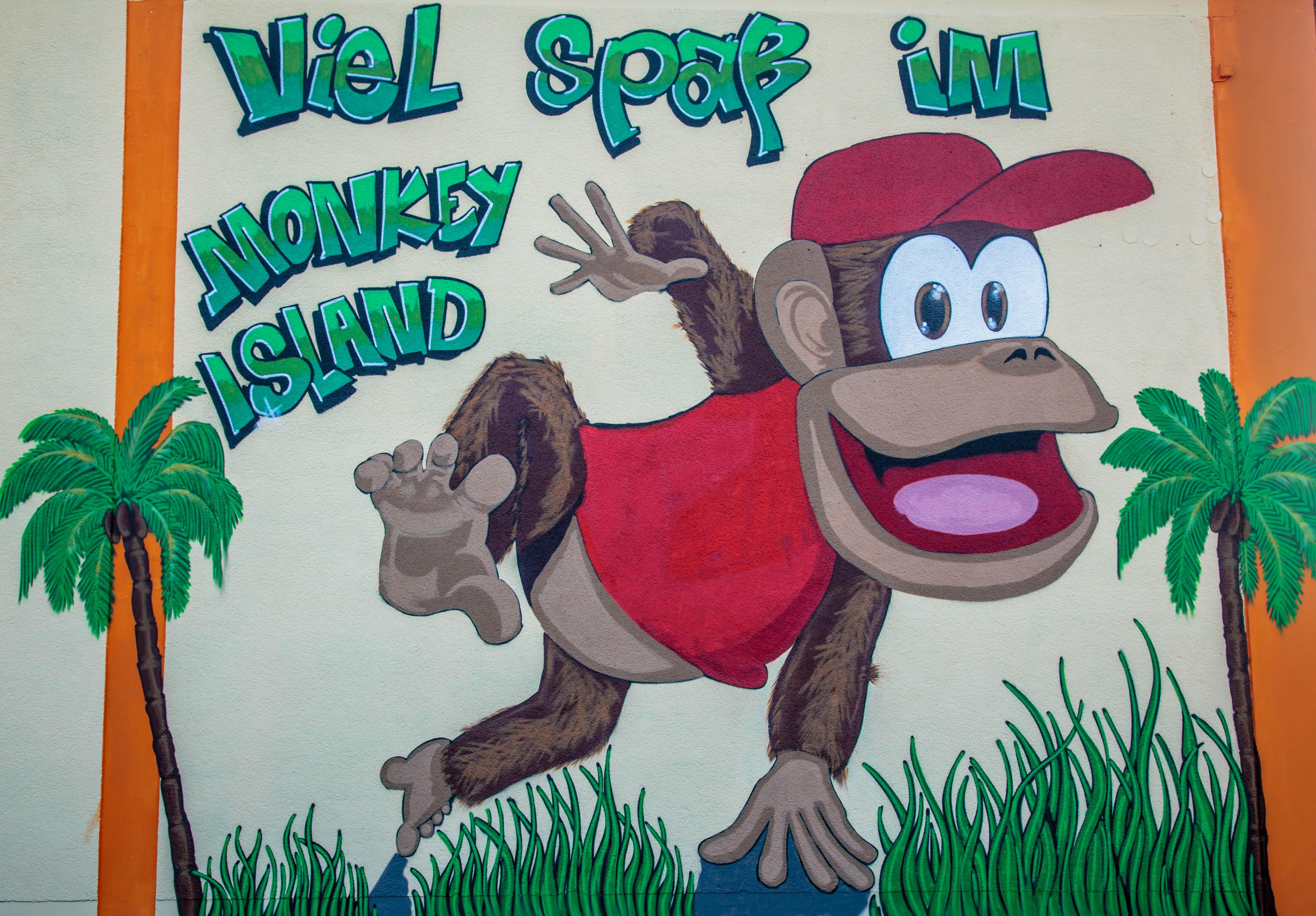 Monkey_049